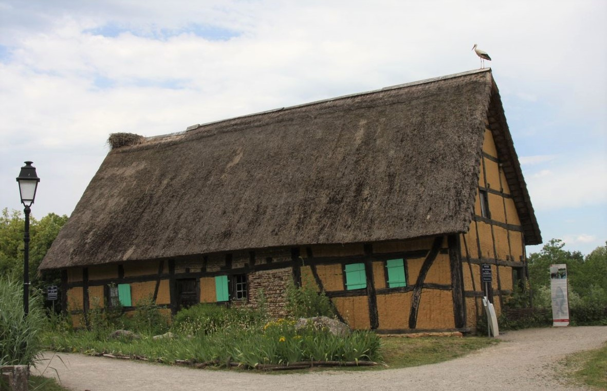 Ein einsamer Storch auf dem Fischerhaus von Artolsheim im Écomusée d'Alsace