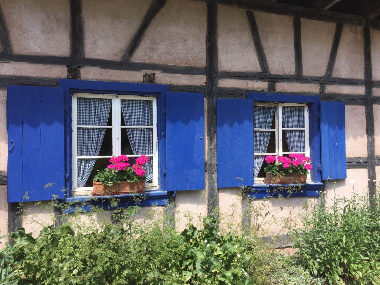 Blaue Fensterlaeden mit Geranien im Écomusée d'Alsace.