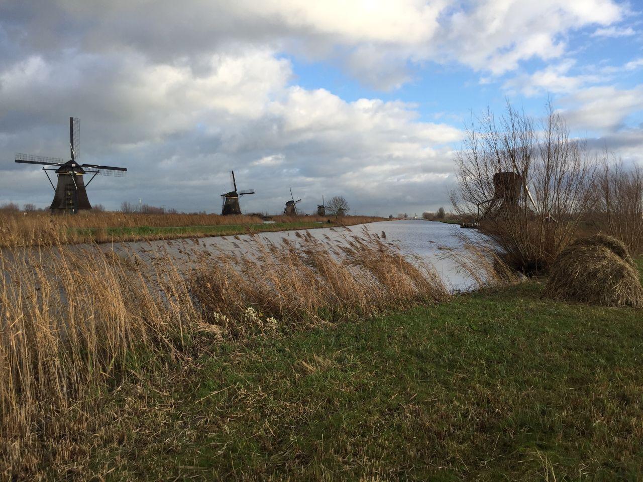 Blick auf die Muehlen des Overwaard am Kinderdijk in den Niederlanden
