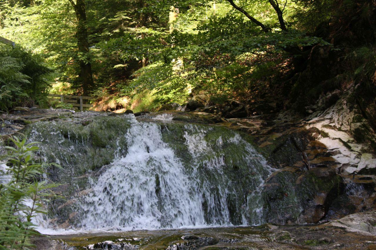 Wasserfaelle Allerheiligen bzw. Buettelsbacher Wasserfaelle im Schwarzwald