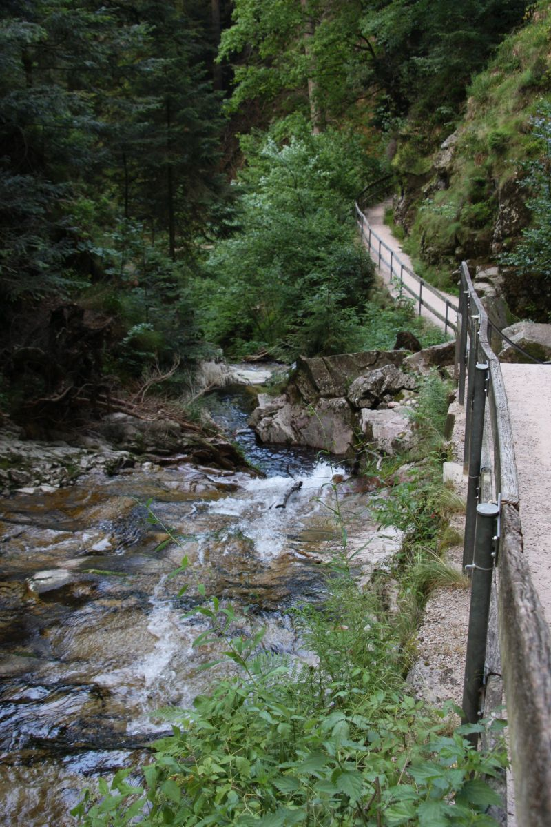 Weg entlang der Wasserfaelle Allerheiligen bzw. Buettelsbacher Wasserfaelle im Schwarzwald