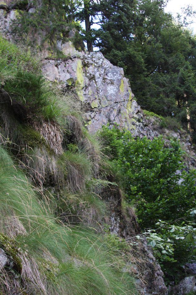 Felswand bei den Allerheiligen Wasserfaellen im Schwarzwald